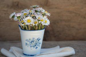 šta znači sanjati cveće