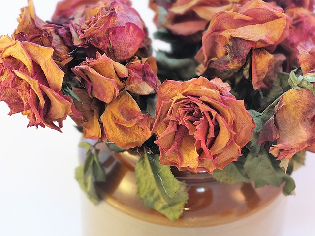 šta znači sanjati cveće uvelo