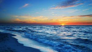 sta znaci sanjati more šta znači krv vodu miša