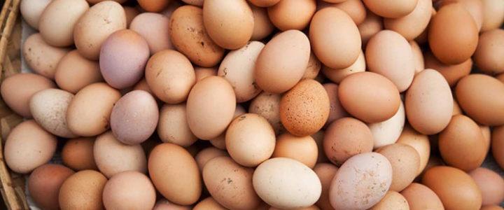 sanjati jaja jaje