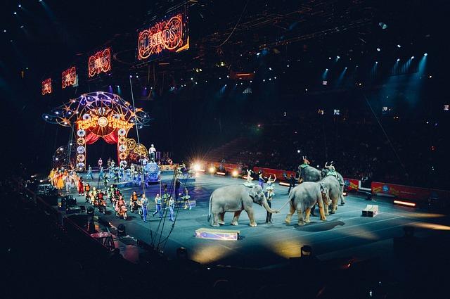 Šta znači sanjati cirkus
