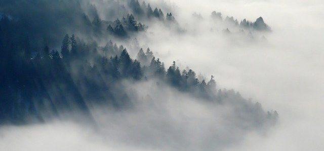 sanjati maglu značenje sna